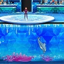 My Dolphin Show 8 HTML5